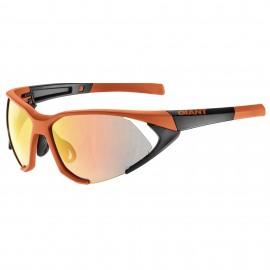 Lunettes GIANT SWOOP PC Revo
