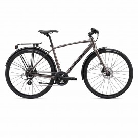 velo de ville Giant Escape 2 City Disc 2020